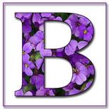 Felicitari onomastica femei: Litera B