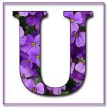 Felicitari onomastica femei: Litera U