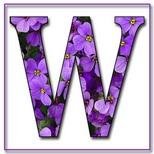 Felicitari onomastica femei: Litera W