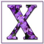 Felicitari onomastica femei: Litera X