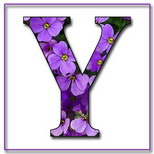 Felicitari onomastica femei: Litera Y