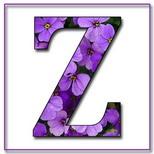 Felicitari onomastica femei: Litera Z