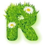 Cartoline onomastico con nome: Lettera R