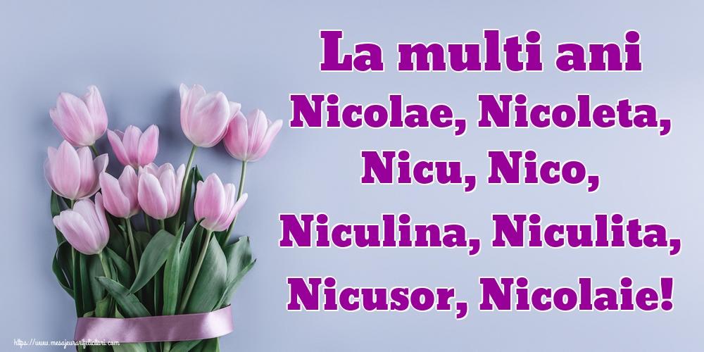 La multi ani Nicolae, Nicoleta, Nicu, Nico, Niculina, Niculita, Nicusor, Nicolaie! - Felicitari onomastice de Sfantul Nicolae