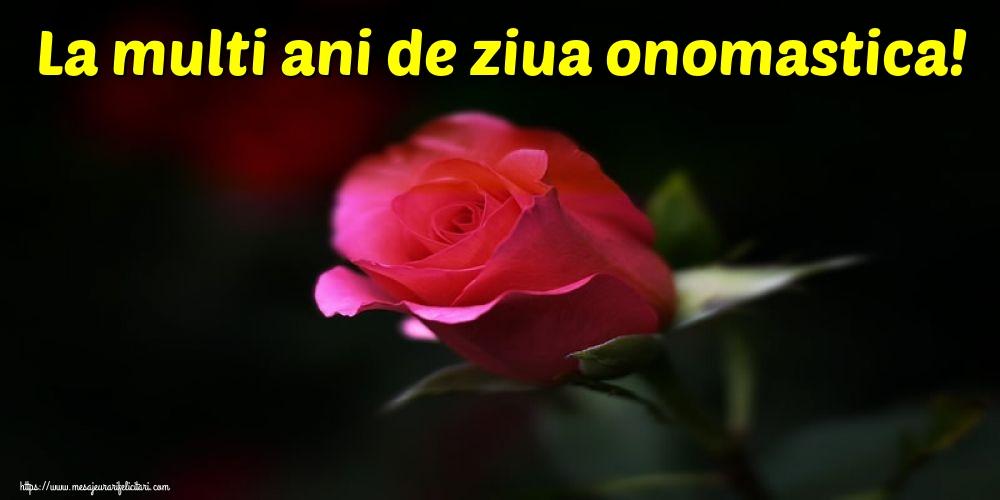 La multi ani de ziua onomastica! - Felicitari onomastice cu flori