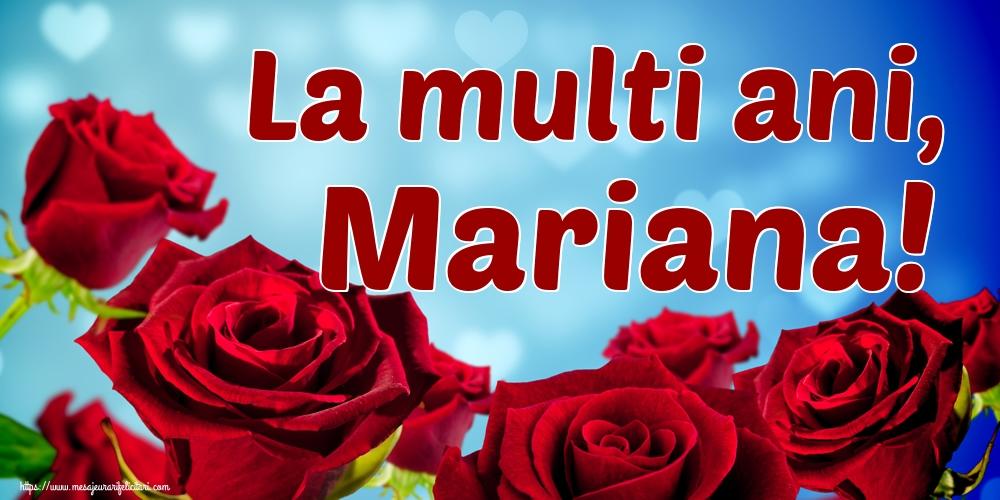 La multi ani, Mariana! - Felicitari onomastice de Sfanta Maria Mica