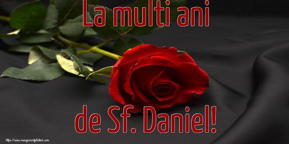 La multi ani de Sf. Daniel! - Felicitari onomastice de Sfantul Daniel cu flori