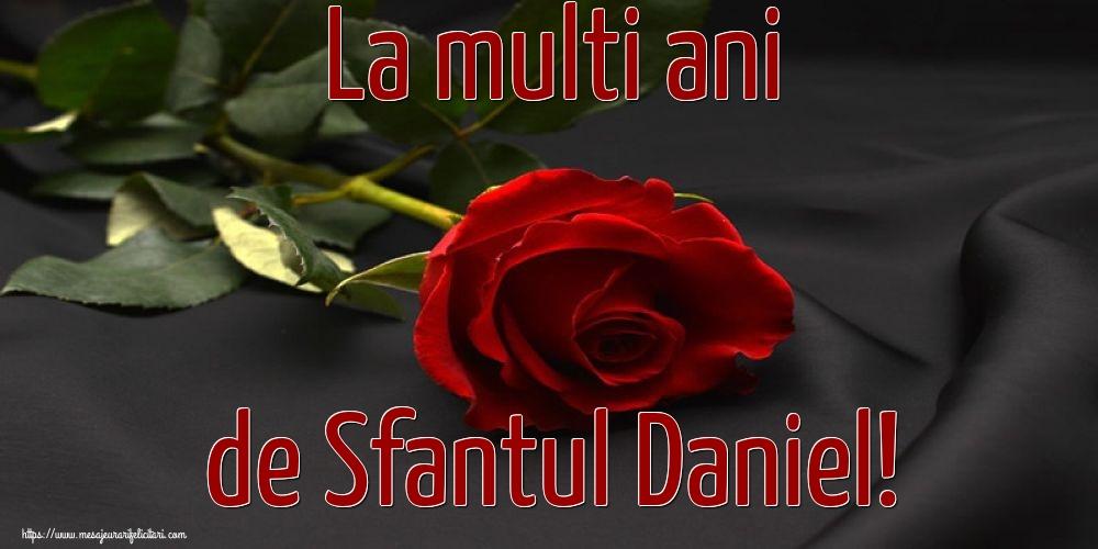 La multi ani de Sfantul Daniel! - Felicitari onomastice de Sfantul Daniel cu flori