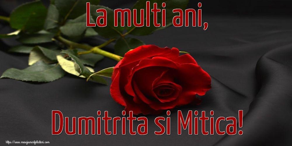 La multi ani, Dumitrita si Mitica! - Felicitari onomastice de Sfantul Dumitru cu flori