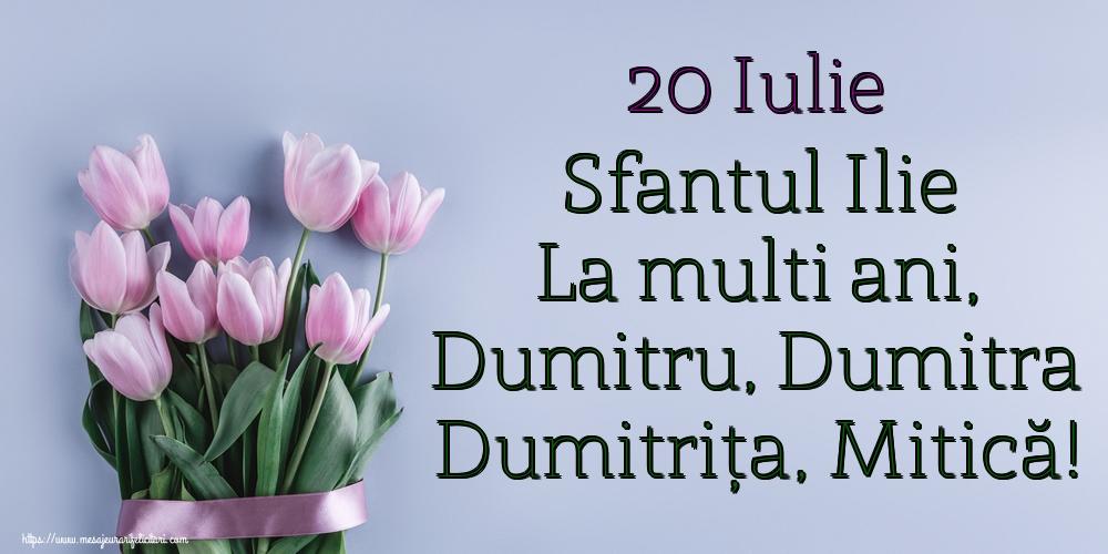 20 Iulie Sfantul Ilie La multi ani, Dumitru, Dumitra Dumitrița, Mitică! - Felicitari onomastice de Sfantul Dumitru