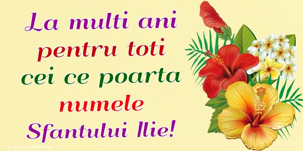 La multi ani pentru toti cei ce poarta numele Sfantului Ilie! - Felicitari onomastice de Sfantul Ilie