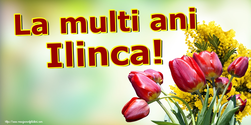 La multi ani Ilinca! - Felicitari onomastice de Sfantul Ilie