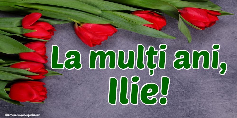 La mulți ani, Ilie! - Felicitari onomastice de Sfantul Ilie