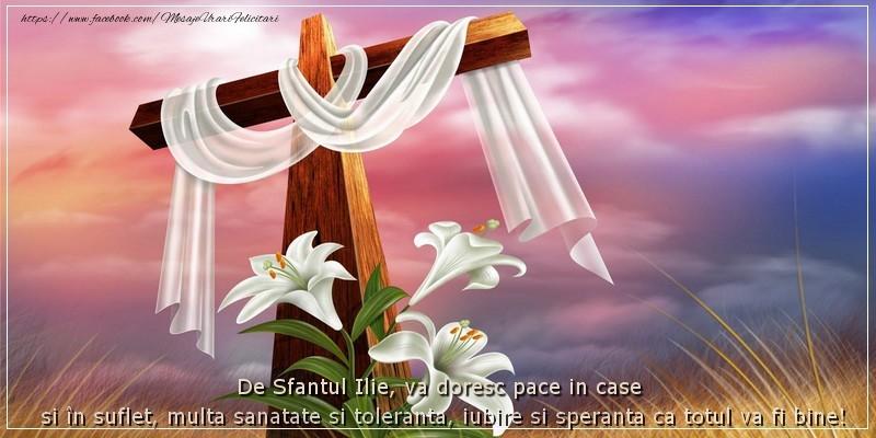 De Sfantul Ilie, va doresc pace in case si in suflet, multa sanatate si toleranta, iubire si speranta ca totul va fi bine! - Felicitari onomastice de Sfantul Ilie