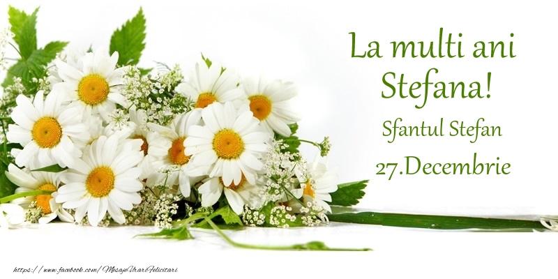 La multi ani, Stefana! 27.Decembrie - Sfantul Stefan - Felicitari onomastice de Sfantul Stefan