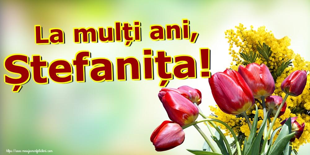 La mulți ani, Ștefanița! - Felicitari onomastice de Sfantul Stefan