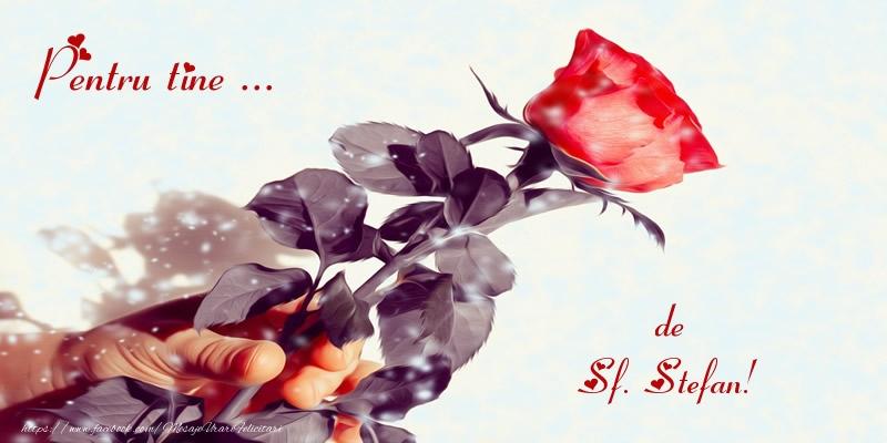 Pentru tine ... de Sf. Stefan! - Felicitari onomastice de Sfantul Stefan
