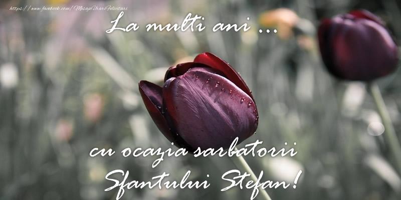 La multi ani ... cu ocazia sarbatorii Sfantului Stefan! - Felicitari onomastice de Sfantul Stefan