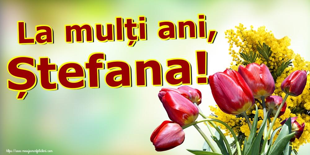 La mulți ani, Ștefana! - Felicitari onomastice de Sfantul Stefan