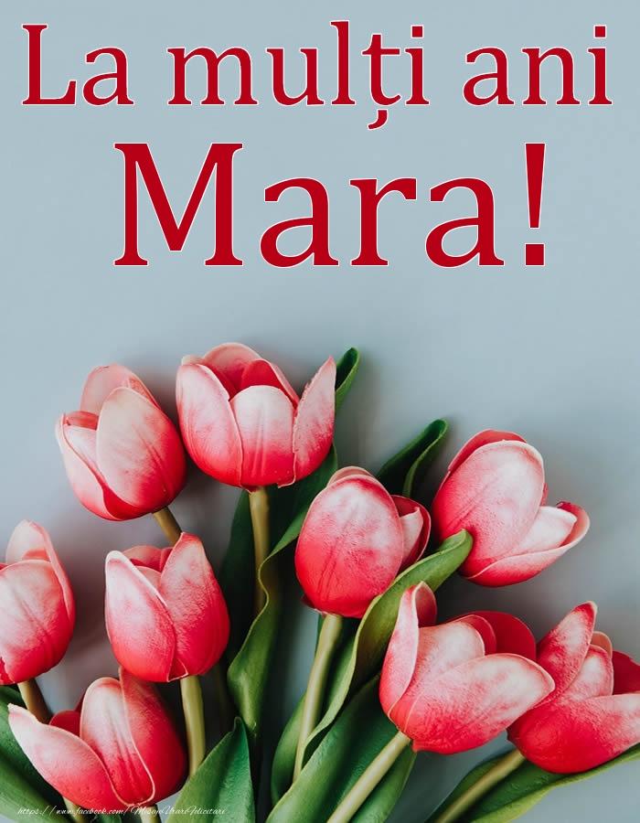 La mulți ani, Mara! - Felicitari onomastice cu flori