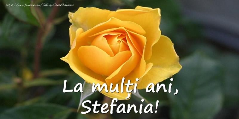 La mulți ani, Stefania! - Felicitari onomastice cu trandafiri