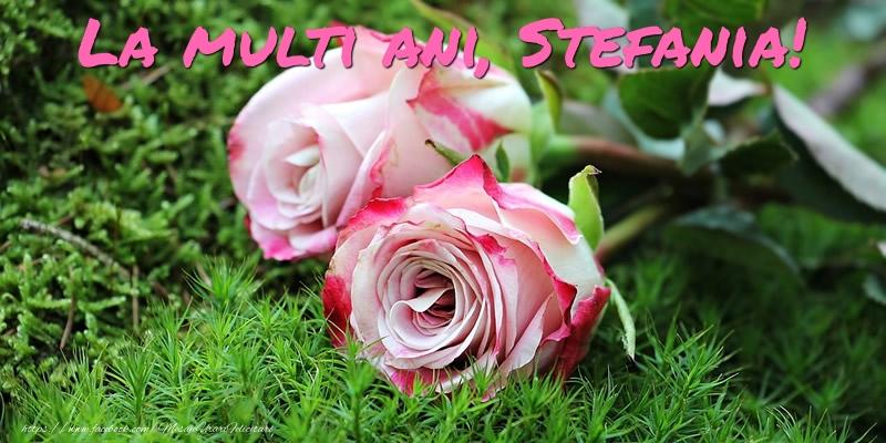 La multi ani, Stefania! - Felicitari onomastice cu trandafiri