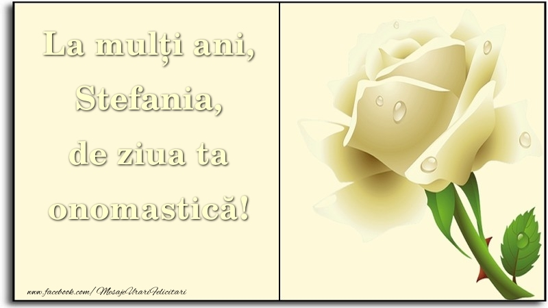 La mulți ani, de ziua ta onomastică! Stefania - Felicitari onomastice